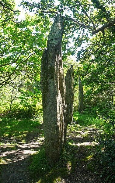 Photo du Monument Historique Trois menhirs de Kerfland et bande de terrain autour situé à Plomeur