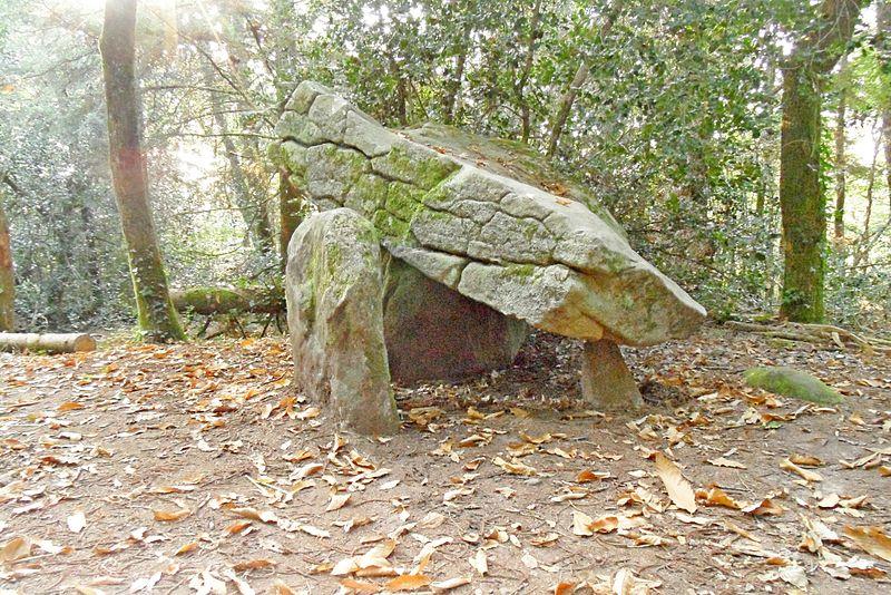 Photo du Monument Historique Dolmen de Ménez-Liaven et bande de terrain autour situé à Pluguffan