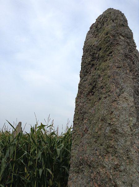 Photo du Monument Historique Alignement formé par les quatre menhirs de Saint-Denec situé à Porspoder