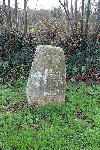 Photo du Monument Historique Stèle protohistorique situé à Riec-sur-Belon