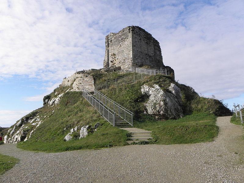 Photo du Monument Historique Restes du château situé à La Roche-Maurice