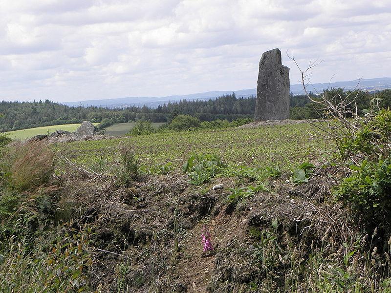 Photo du Monument Historique Alignement des menhirs de Trimen situé à Saint-Goazec