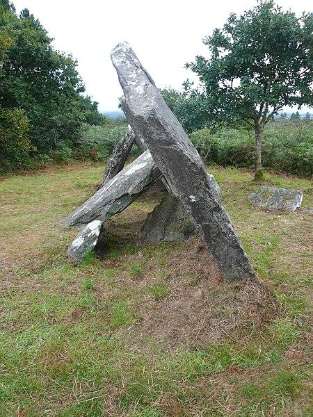 Photo du Monument Historique Allée couverte à dalles inclinées de Castel-Ruffel situé à Saint-Goazec