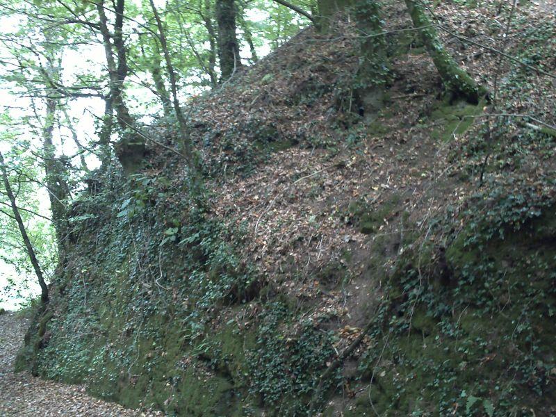 Photo du Monument Historique Motte castrale du Roc'h situé à Arzano