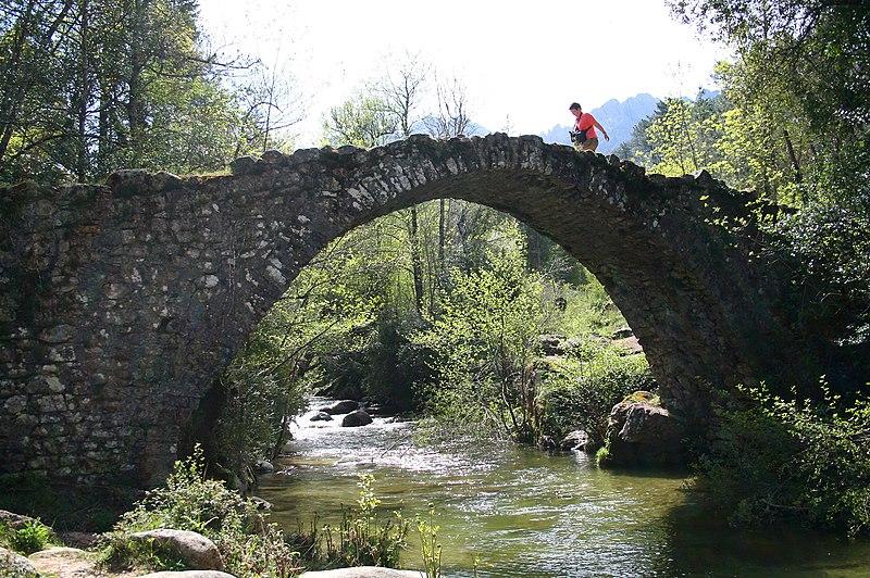 Photo du Monument Historique Pont génois de Zippitoli situé à Bastelica
