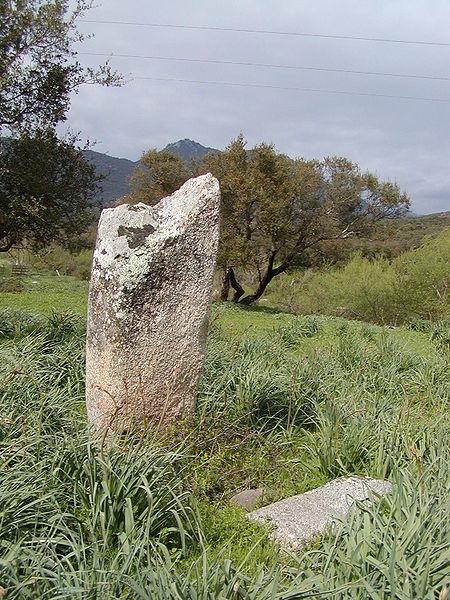 Photo du Monument Historique Deux menhirs du Rizzanèse situé à Sartène