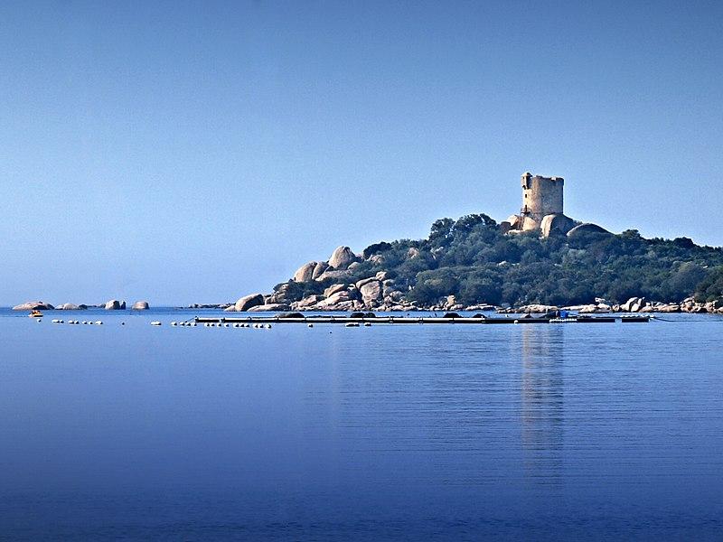 Photo du Monument Historique Tour de Figari ou de Caldarello situé à Pianotolli-Caldarello