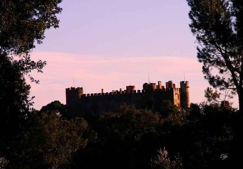Photo du Monument Historique Château situé à Montfaucon