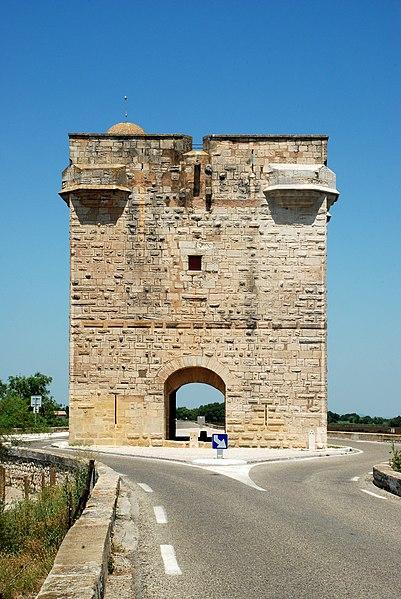 Photo du Monument Historique Tour Carbonnière situé à Saint-Laurent-d'Aigouze