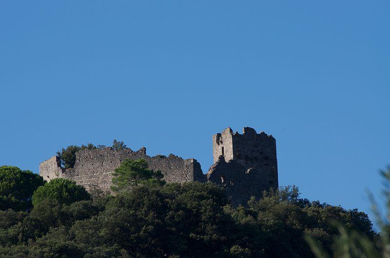 Photo du Monument Historique Château situé à Fressac