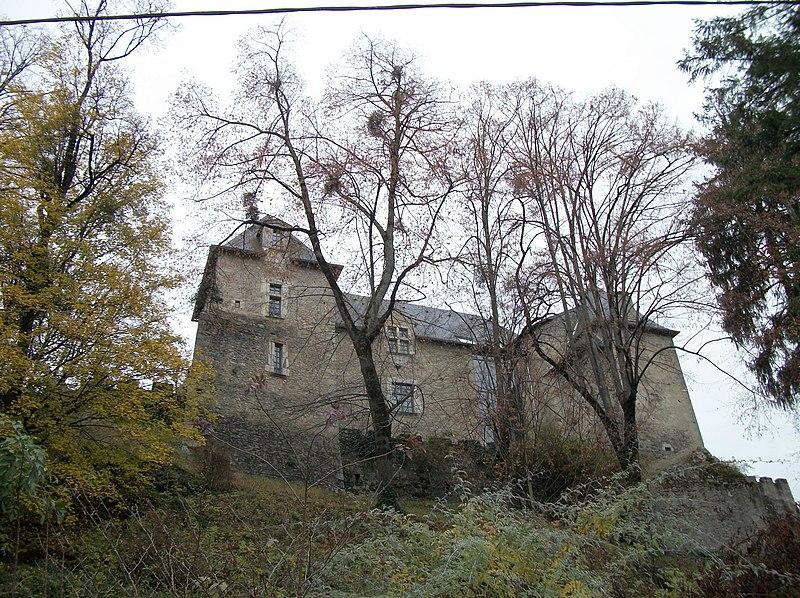 Photo du Monument Historique Château situé à Barbazan
