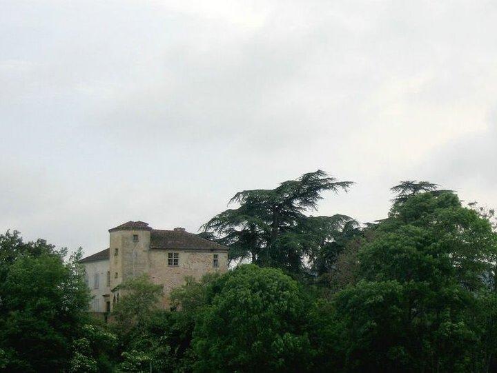 Photo du Monument Historique Château situé à Latoue