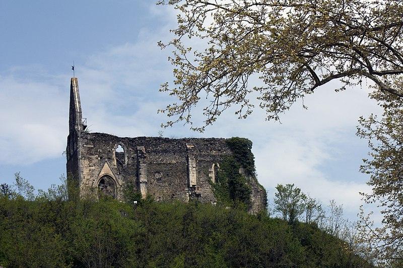 Photo du Monument Historique Ruines de l'ancienne église situé à Salies-du-Salat