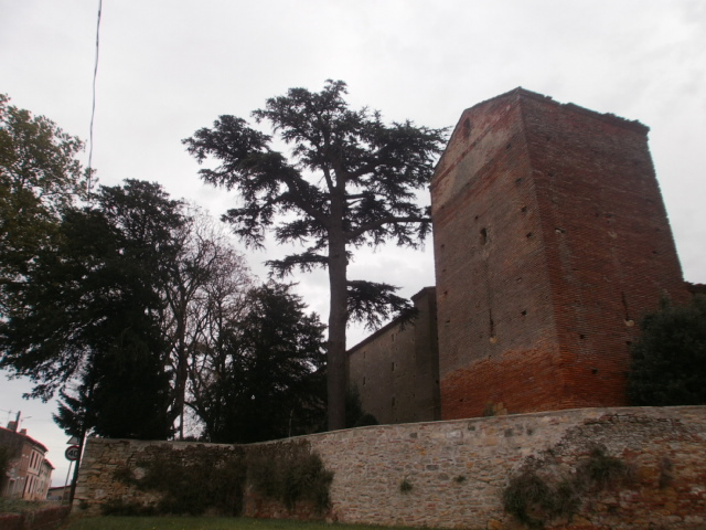 Photo du Monument Historique Château situé à Vallègue