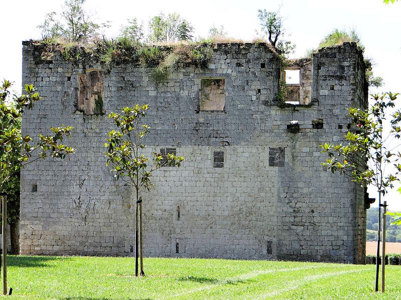 Photo du Monument Historique Château de Balarin situé à Montréal