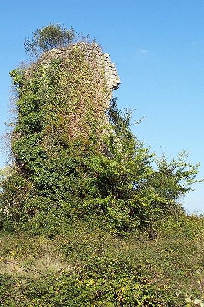 Photo du Monument Historique Ruines du château situé à Aillas