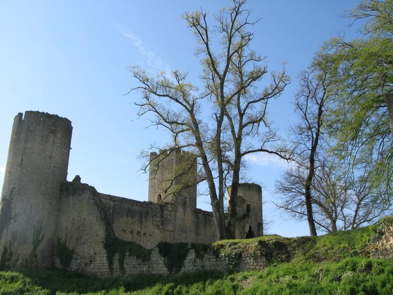 Photo du Monument Historique Château de Budos situé à Budos