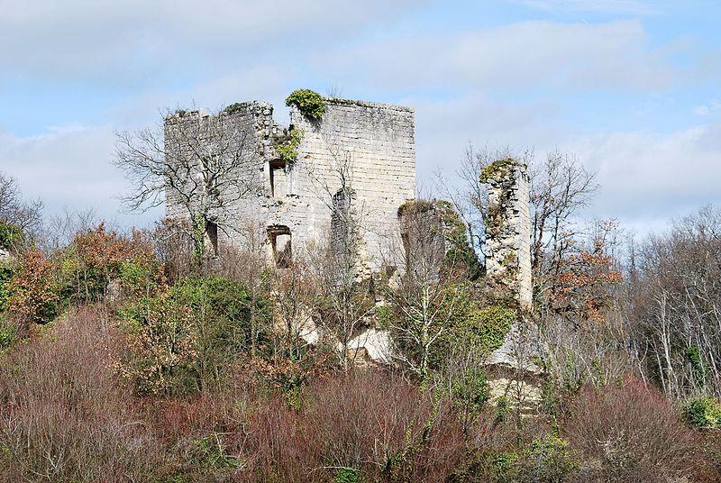Photo du Monument Historique Ruines du château de Malengin situé à Montagne
