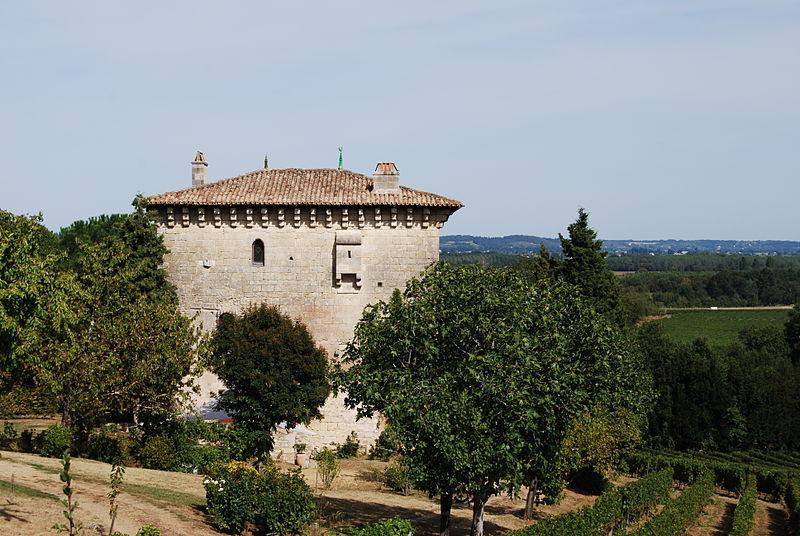 Photo du Monument Historique Tour de l'Ansouhaite situé à Moulon