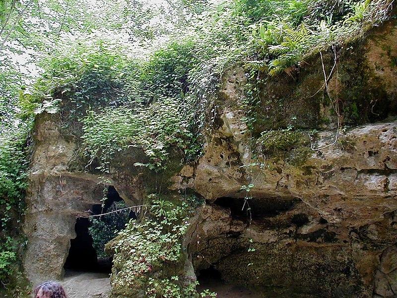 Photo du Monument Historique Caverne à peintures dite de Pair-non-Pair situé à Prignac-et-Marcamps