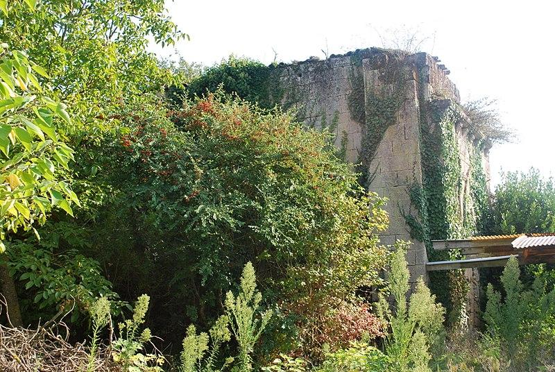 Photo du Monument Historique Ruines de la chapelle de Lurzine situé à Prignac-et-Marcamps