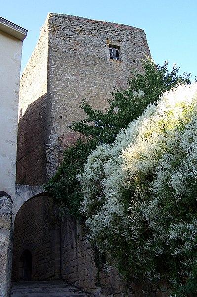 Photo du Monument Historique Maison Messidan situé à Saint-Macaire