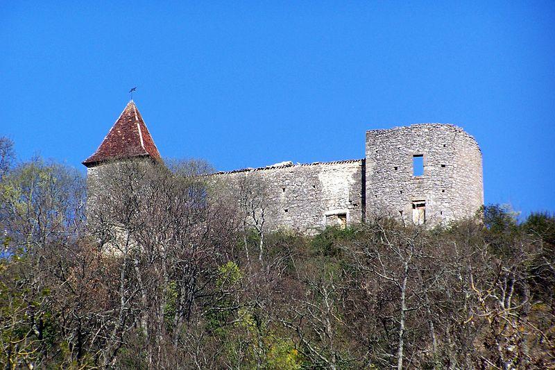 Photo du Monument Historique Château du Cros situé à Loupiac