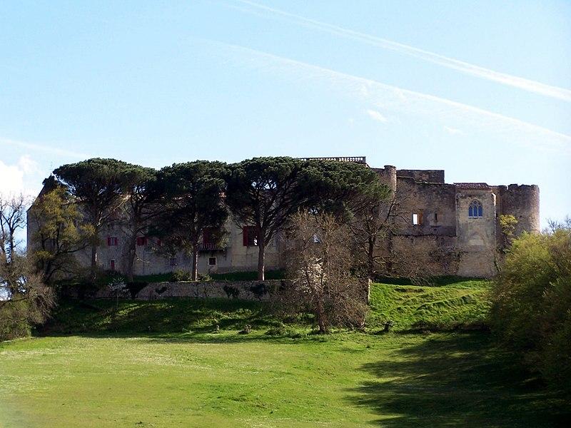 Photo du Monument Historique Château de Benauge situé à Arbis