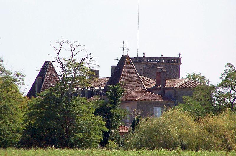 Photo du Monument Historique Château de Carpia situé à Castillon-de-Castets