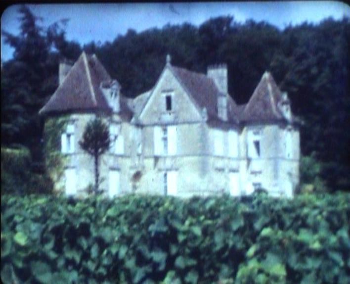Photo du Monument Historique Château Falfas situé à Bayon-sur-Gironde