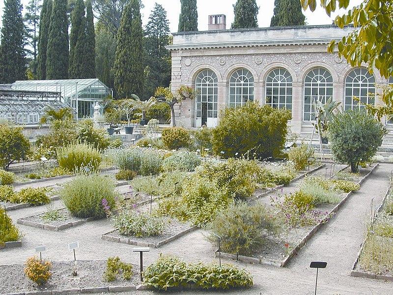 Photo du Monument Historique Jardin des Plantes situé à Montpellier