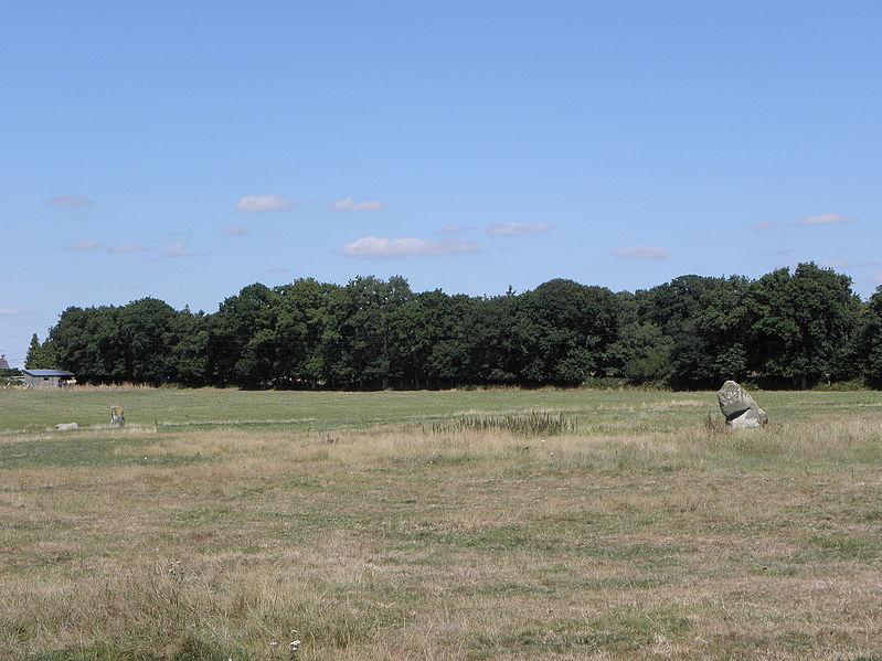 Photo du Monument Historique Alignement de menhirs de Bringuerault situé à Hédé