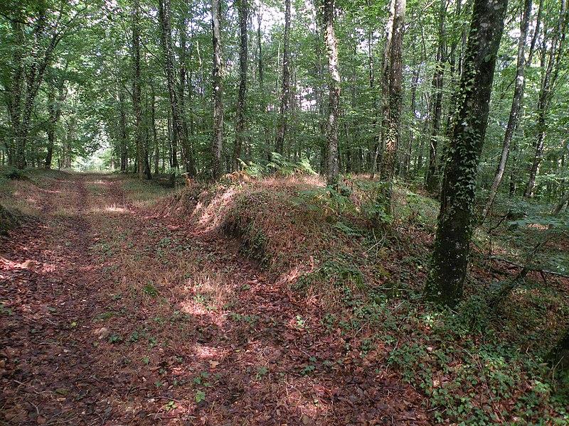 Photo du Monument Historique Oppidum situé dans la forêt domaniale de Fougères situé à Landéan