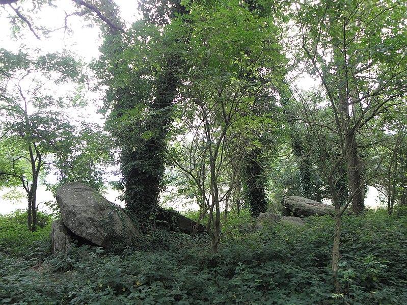 Photo du Monument Historique Allée couverte de Four-es-Feins situé à Miniac-Morvan
