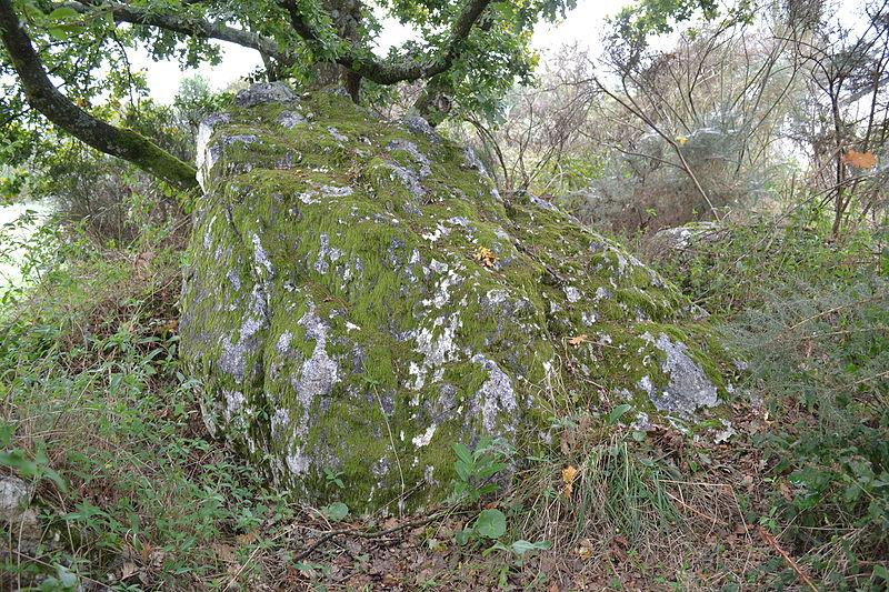 Photo du Monument Historique Sépulture mégalithique et tertre situé à Pléchâtel