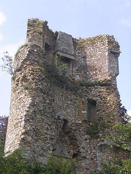 Photo du Monument Historique Château situé à Saint-Aubin-du-Cormier