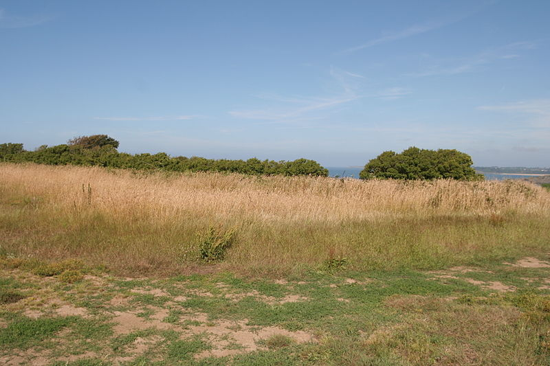 Photo du Monument Historique Retranchement de l'âge du Fer et de la pointe de Meinga situé à Saint-Coulomb