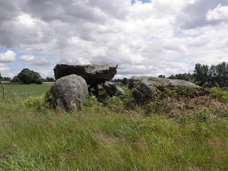Photo du Monument Historique Dolmen du Rocher Jacquiaux, ou Jacquau situé à Saint-Germain-en-Coglès