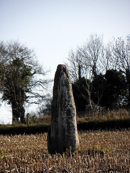 Photo du Monument Historique Menhir dit La Roche Longue situé à Saint-Marcan
