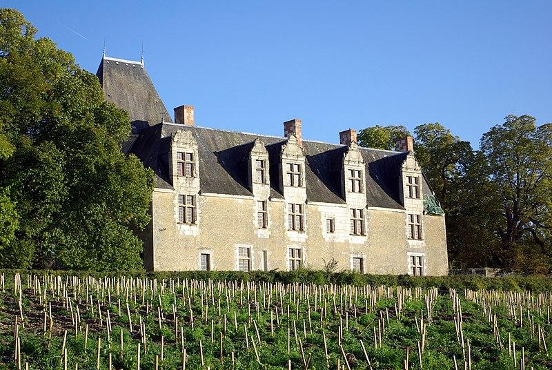 Photo du Monument Historique Château de la Cour-au-Berruyer situé à Cheillé