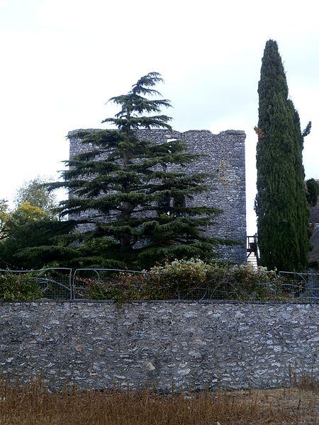 Photo du Monument Historique Vestiges du donjon situé à Cigogné