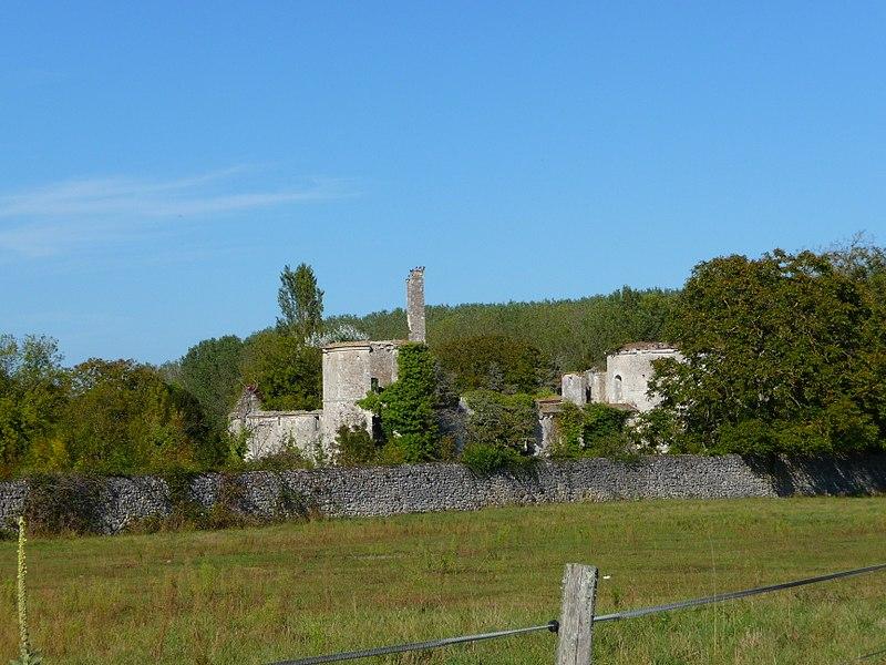 Photo du Monument Historique Ruines du château situé à Hommes