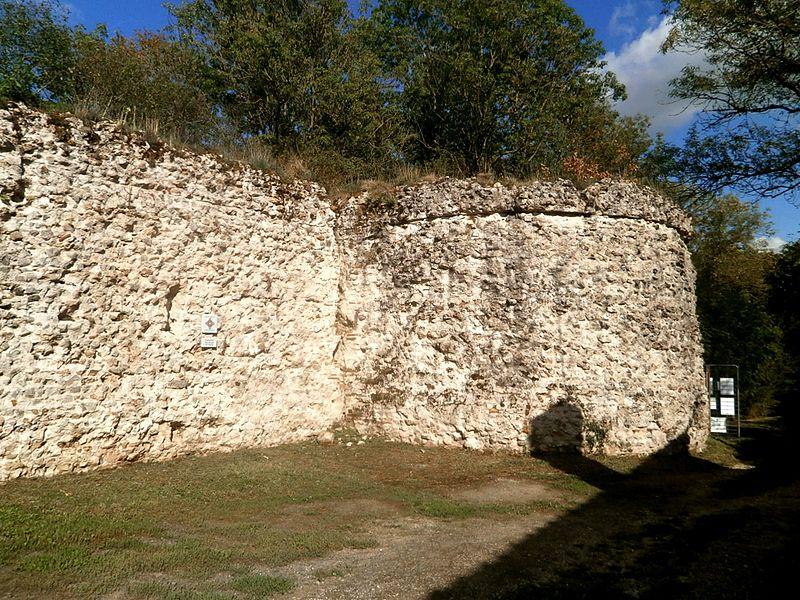 Photo du Monument Historique Vestiges du castellum romain situé à Larçay