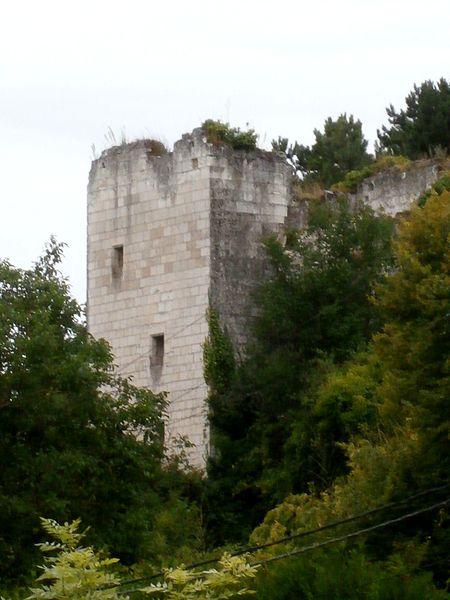 Photo du Monument Historique Tour de Mauvières situé à Loches