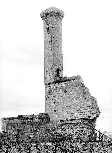 Photo du Monument Historique Tour dite La Lanterne situé à Rochecorbon