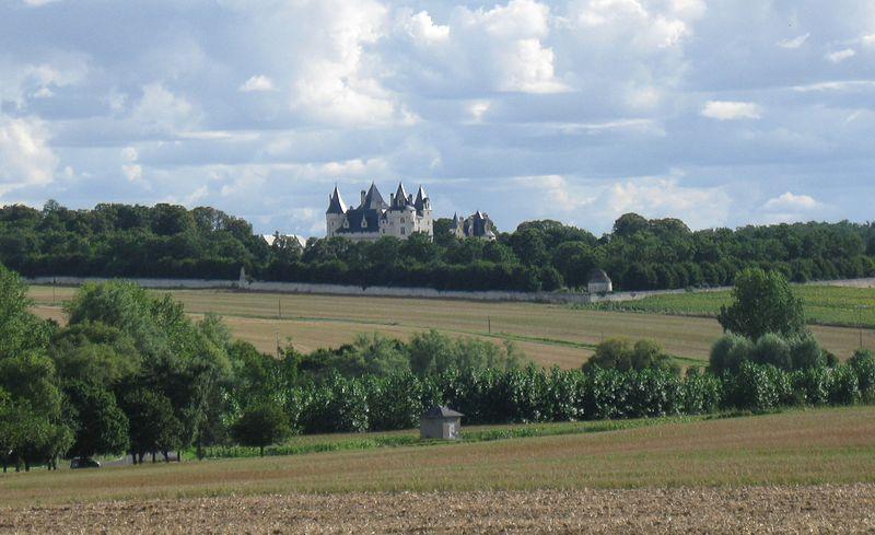 Photo du Monument Historique Domaine de Montpensier ou Coudray-Montpensier situé à Seuilly
