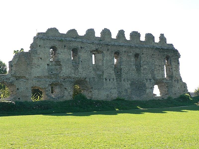 Photo du Monument Historique Château de Beauvoir (ruines) situé à Beauvoir-en-Royans