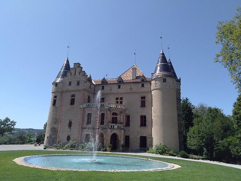 Photo du Monument Historique Château de Pupetières situé à Châbons