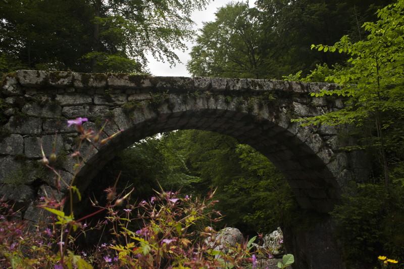 Photo du Monument Historique Pont de la Forge ou de la Fabrique sur le Guiers-Mort situé à Saint-Pierre-de-Chartreuse