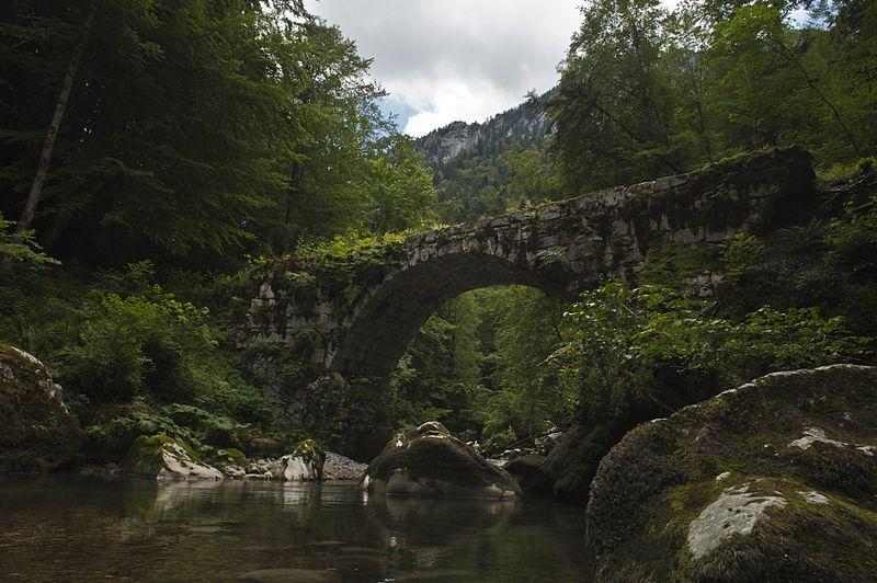 Photo du Monument Historique Pont de la Tannerie sur le Guiers-Mort situé à Saint-Pierre-de-Chartreuse